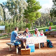 kinglake-picnic